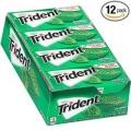 트라이던트 무설탕 껌 12팩 (Spearmint, Cinnamon 맛)